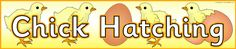 Hatching Chicks/Chick Hatching display banners (SB9415) - SparkleBox
