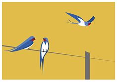 Irish Bird SeriesAn ongoing fine art print series based on a contemporary interpretation of bird-life.