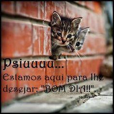 Frases para Facebook - Psiu! Bom dia! - Frases com imagens e recados para Facebook
