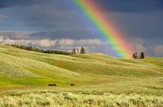 April 3rd Is Find A Rainbow Day What do you need to see a rainbow outside? You can see a rainbow when it is raining and after rain as the light is reflected and refracted into a spectrum. The sun s… http://ShopNPrizes.com/find-a-rainbow-day-is-april-3rd