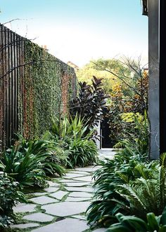 A good backyard landscaping idea is one that everyone can make use of. There are many different backyard landscaping ideas and most of them are pretty good Path Design, Design Ideas, Dream Garden, Garden Paths, Amazing Gardens, Garden Inspiration, Outdoor Gardens, Side Gardens, Small Courtyard Gardens