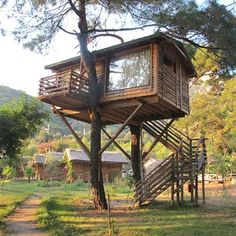 Tree House Plans For Two Trees tree + house = pete nelson, the treehouse guy | na, stays and pete