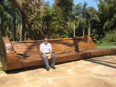 Partidas e Chegadas: Belo Horizonte - 2 MG Tree Furniture, Outdoor Furniture, Outdoor Decor, Bench, Home Decor, Skyline 2, Weather, Decoration Home, Room Decor