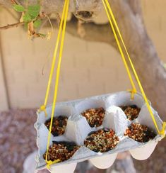 Egg carton DIY bird feeder - What a super savvy Bird Feeder for spring! Using duct tape & a tin can you can create this super simple bird feeder. Check out this post to see 9 More plus 2 DIY butterfly Feeder's! A really quick and easy DIY project idea! Perfect crafts idea for kids. #easycrafts #crafts #craftideas #diy #craftidea #kidscraftidea #hhmuk #crafting
