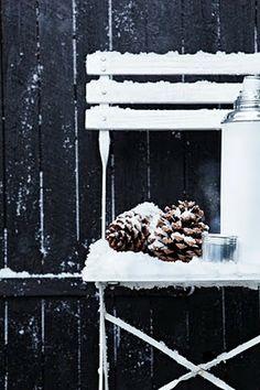 #Mazzelshop-- #Inspiratie #Decoratie #Wintertuin #Styling #Woonstijl #Wintergarden #Home