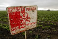 """A """"Do Not Enter"""" sign marks a field of head cabbage during the spraying of pesticides near Chualar, Calif., Monday, Sept. 16, 2002.  State reports of pesticide poisonings among farmworkers are declining, but labor advocates say that tougher state laws and more enforcement are needed to adequately protect the people picking and packing crops. (AP Photo/Mike Fiala)"""