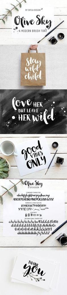 Modern brush font - Olive Sky by Skyla Design on @creativemarket