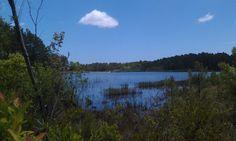 Boiling Springs Lake, NC