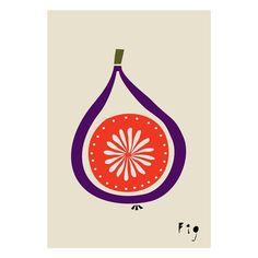 Fig Art print Geometry Vegetable Fruit Drawings by dekanimal Fruit Illustration, Botanical Illustration, Granada, Fig Drawing, Vegetable Prints, Cafe Art, Fruit Painting, Kitchen Art, Kitchen Decor