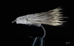 Caddis size 14 By Thomas Roos