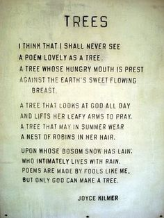 I think that I shall never see A poem lovely as a tree.A tree that looks at God all day, And lifts her leafy arms to pray. Joyce Kilmer I love trees:) ~g Shining Tears, Tree Poem, Life Quotes Love, Tree Of Life Quotes, Family Quotes, Poem Quotes, Wisdom Quotes, Nature Quotes, Nature Poem