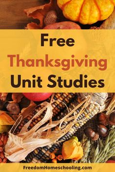 Free Thanksgiving unit studies for all ages. Thanksgiving History, Thanksgiving Activities For Kids, Holiday Activities, Thanksgiving Ideas, Fun Activities, Holiday Ideas, Turkey Facts, Lessons For Kids, Bible Lessons