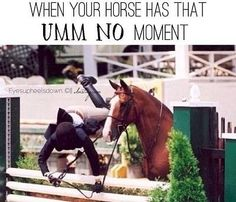 When your at a the base of a jump...Or your horse stands there and jumps it unknowingly!!!