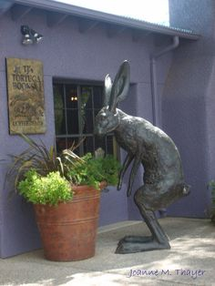 That is a rabbit of unusual size indeed. ~ Rabbit Statue by Tortuga Books at Crowe's Nest area, Tubac, Arizona, July 2009 Rabbit Sculpture, Art Sculpture, Animal Sculptures, Bunny Art, Cute Bunny, Big Bunny, Lapin Art, Rabbit Art, Giant Rabbit