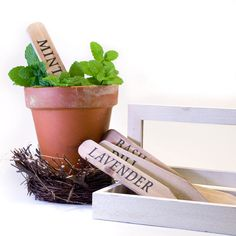 Wooden Herb Stakes and  Garden Markers