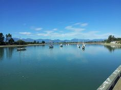 Mapua, near Nelson, NZ. A nice spot for lunch.