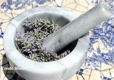 How to make Lavender Essential Oil. A practical use for my Lavender plant Homemade Beauty, Diy Beauty, Herbal Remedies, Home Remedies, Making Essential Oils, Lavender Essential Oils, Making Oils, Lavender Oil, Lavender Plants