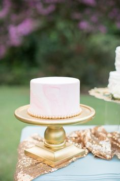 A Dreamy Garden Wedding with a Modern Southern Belle Pink Wedding Colors, Pink And Gold Wedding, Wedding Color Schemes, Southern Belle, Garden Wedding, Vanilla Cake, Blush Pink, Wedding Ideas, Modern