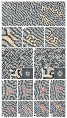 An inverse transition of magnetic domain patterns in ultrathin films  This is so close to being a maze its simply not funny
