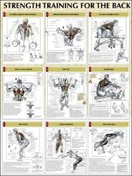 Back Strength Training Poster
