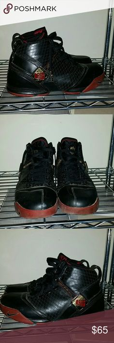 25faa95bc87b Nike Zoom Lebron V size 10.5 Shoes have been worn. Overall good condition.  Midstraps