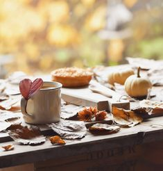 Fall Picnic, Enjoy It, Doughnuts, Instagram, Cooking, Simple, Ethnic Recipes, Food, Colors
