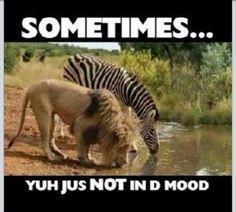 Just don't feel like it. .