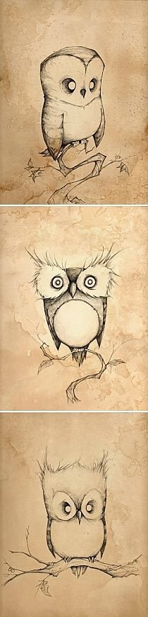 these are some of the cutest and most unique owls i have seen, would make a great tattoo idea, especially together