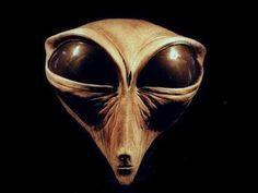 RAZA INSECTOIDE ( MANTIS ) Aliens And Ufos, Ancient Aliens, Alien Life Forms, Grey Alien, Space Aliens, Alien Races, Extra Terrestrial, Crop Circles, Snake Eyes