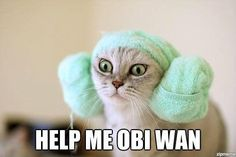 Obi Wan.