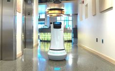 Is this the future of room service? Robots deployed to cater to hotel guests' needs... and they can even navigate the lifts | Savioke design androids that can take orders and deliver to guests.