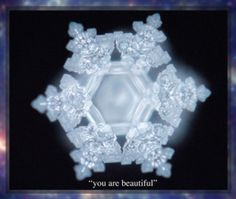 Masaru Emoto, You are Beautiful