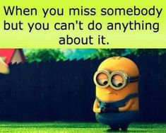 87 Funny Minion Quotes Of The Week And Funny Sayings 15