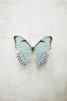 | Pinterest @cirkieboltonjewelry #butterfly