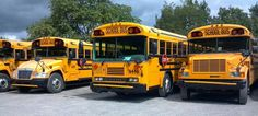 Awesome School Bus Pic!!!!!!