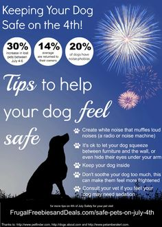 Tips for keeping your dog safe on July 4th #ad #NudgesMoments #cbias  http://www.frugalfreebiesanddeals.com/safe-pets-on-july-4th/