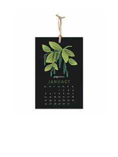 Herbs & Spices Kalender 2014