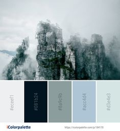 Color Palette ideas from 693 Winter Images Color Combinations, Color Schemes, Winter Images, Find Color, Winter Colors, Color Swatches, Colour Palettes, Color Pallets, Board Ideas