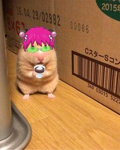 Kpop Anime, Otaku Anime, Anime Guys, Manga Anime, Fanarts Anime, Anime Characters, Fictional Characters, Haha Funny, Funny Memes