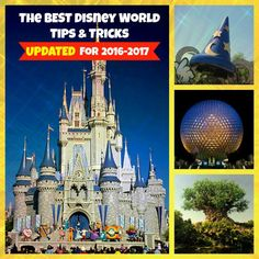 My Entire Blog is dedicated to Tips & Tricks for Disney World travel.Whether you are overwhelmed with the process of planning or looking to save yourself time in the parks or money during the ...