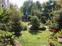 Dilek Kaya bahçem