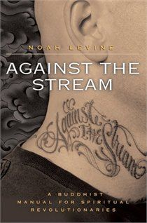 Against The Stream: A Buddhist Manual for Spiritual Revolutionaries   by Noah Levine