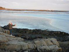 stage island - Review of Goat Island Lighthouse, Cape Porpoise, ME - TripAdvisor