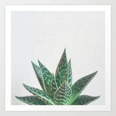 Aloe Tiki Art Print by cassiabeck Vintage Art Prints, Vintage Posters, Fine Art Prints, Canvas Prints, Canvas Paintings, Cool Wall Decor, Tiki Art, Cute Canvas, Botanical Prints