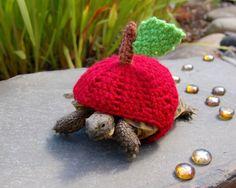 Crocheted Tortoise Cozy Accessories