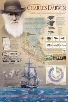The Genius of Charles Darwin Posters at AllPosters.com