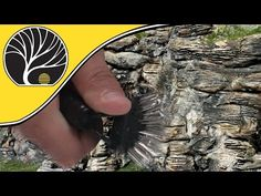 Easy Rock Carving | Model Scenery | Woodland Scenics - YouTube