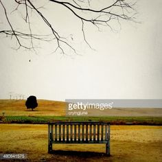 Stock Photo : Park bench in front of field