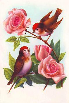 Vintage birds, aviaries and eggs :-) Enjoy! Fruit Painting, Fabric Painting, Painting Art, Bird Drawings, Cartoon Drawings, Canvas Painting Projects, Ariana Grande Drawings, Bird Canvas, Bird Coloring Pages