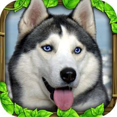 Stray Dog Simulator apk android Free    http://android4fun.net/stray-dog-simulator/    #StrayDogSimulator #apk #free #android #download #android4fun